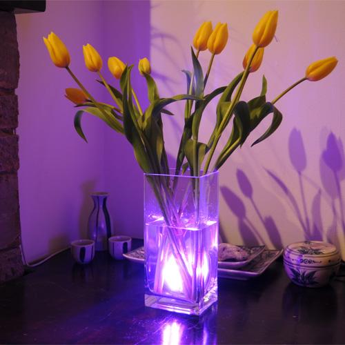 Aqua Mood Light Onderwaterverlichting Afstandsbediening