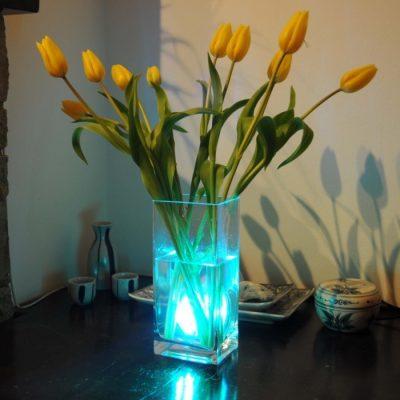 Aqua Mood Light Onderwaterverlichting