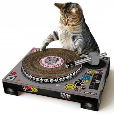 Kat krabpaal DJ Speelgoed