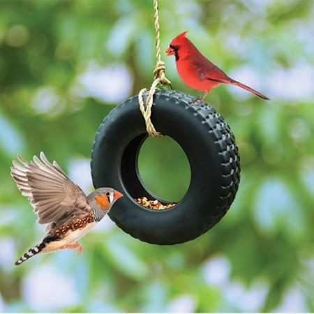 Swing Time Bird Feeder Autoband Nunet